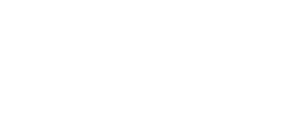 The Argus Real Estate Company